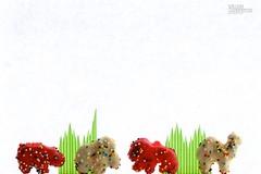Day 48|366 - Animal Crackers Run Amock (∞ RedLoop ∞) Tags: pink white cookies childhood catchycolors fun amazon treats memories sprinkles kellogg circusanimal motherscookies project366 ∞redloop∞ theateamrallyingforaurelia