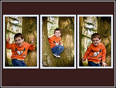 In the woods (Karen C. ) Tags: trees portrait collage canon spring woods child tamron tryptic