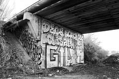 RAW (Reed  son Pellier) Tags: white black nature train noir tag graf montpellier route rails et blanc dessous ponts dchet vagabon