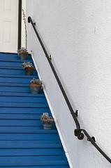 Blue Stairs (øNce wAs jacØb) Tags: blue white stairs nikon stairwell pot pots staircase handrail whiterock plantpots urbanexplorers d5000 oncewasjacob facebookoncewasjacob instagramoncewasjacob1978 twitteroncewasjacob1978