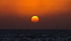 047 (Mobeen Mazhar) Tags: road city sunset sea beach night marina sunrise mall zoo al gulf centre towers 360 center crescent kuwait souq maidan salmiya avenues scientific ahmadi sharq fahaheel hawally hamra failaka safat agaila farwaniah