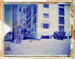 Phoenix, AZ (moominsean) Tags: arizona phoenix palms polaroid apartment desert super 190 type108 expired012000