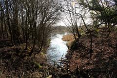 Brandon Marsh (kestrel49) Tags: uk england europe britain naturereserve gb 12 warwickshire 2012 brandonmarsh brandonmarshes