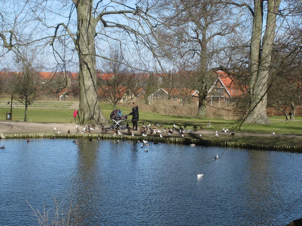 Spring in Roskilde
