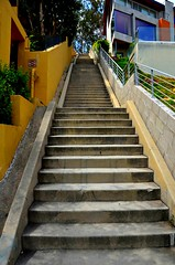 Upper Glendower (2 of 3) (Pedestrian Photographer) Tags: california park public stairs la los angeles sunday steps hike stairway hills upper step socal hollywood april feliz griffith ribbet 2014 glendower dsc2752b
