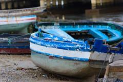 Cádiz y su bahía-7 (cives-expat) Tags: españa río elpuertodesantamaría