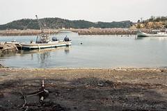20160424-04 (GenJapan1986) Tags: sea film japan landscape island   miyagi  2016     nikonnewfm2   fujifilmfujicolorsuperiapremium400   hojima