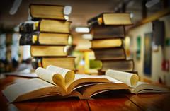 Dia del libro (Jorge Osorio Sb) Tags: chile santiago nikon biblioteca libros providencia filtro d7000