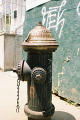 000029 () Tags: newyork film 35mm pentax takumar f2 smc flushing portra160  esii