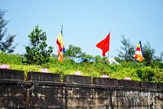 All things bright... (Roving I) Tags: trees colour concrete religion bridges buddhism flags vietnam greenery hue beliefs lotusflowers