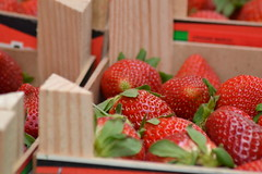 Strawberry Fields Forever (Isabela Martin) Tags: city red urban detail macro closeup fruit market strawberries