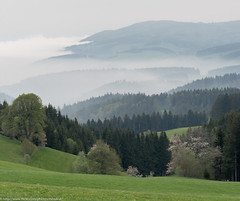 Black Forest in Baden-Wrttemberg (iM@n) Tags: black forest badenwrttemberg
