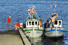 Chiloe / Chile (Leon Calquin) Tags: chile travel santiago flickr photos viajes leon fotos catalog diseo isla videos catalogo chiloe calquin leoncalquin quincal