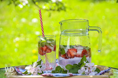 Refreshing drink in the garden (WDnet) Tags: flowers red party summer sun green ice apple glass grass closeup garden cool strawberry glow tube mint bubbles jug leisure relaxation blooming refreshment mineralwater fruittea fortunately strawberrydrink d3100
