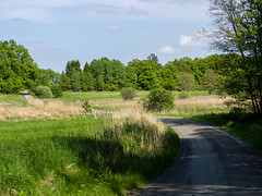 Bogesund (Daniel Turull) Tags: nature landscape se meetup sweden hike sprig vaxholm bogesund stockholmsln