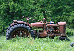 Out to Grass (dlberek) Tags: abandoned newjersey rusty abandonment farmall farmequipment rundown oldtractor sussexcountynj historicfarmequipment