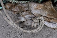 ten harbour details: 1 (Bob_Last_2013) Tags: abstract detail texture harbour fabric grime