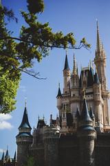 Vacaciones Orlando - Oct. 2015 (Jose Rondon - fotografia) Tags: 50mm frozen orlando resort disneyworld waltdisney lightroom sigma50mm presets vsco orlandoparks canon5dmarkiii ryanlongneckerpresets anaandelsa