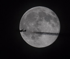 Last night I was out photographing the Strawberry Moon. I was astonished to see an airplane fly right across the moon! If my reflexes had been just a bit faster I might have the entire airplane in the shot! (Mawrter) Tags: voyage travel blackandwhite moon abstract travelling texture silhouette blackbackground night plane circle airplane interesting contrail aircraft flight fullmoon explore nightflight round nightsky nuit far lunar interest onthemove avion moonshot strawberrymoon voldenuit explored photobomb
