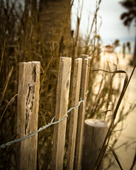We're not in Kansas anymore Toto! (d_russell) Tags: beach fence hff ef24105mmf4 canon7d fencefriday fenchfriday fencedfriday 365the2012edition
