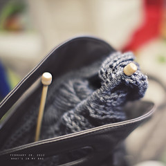 [59/366] what's in my bag (Natali@) Tags: bag knitting yarn 365 needles whatsinmybag camerabag 2012 366
