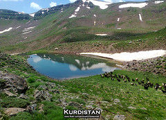 "KurDisTan كوردستــان (Kurdistan Photo كوردستان) Tags: love nature turkey landscape photography iran iraq türkiye photojournalism collection loves turkish kurdistan irak kurdish kurd kurds kurdi naturesfinest blueribbonwinner الشباب kurden supershot photospace peshmerga حركة abigfave platinumphoto impressedbeauty aplusphoto flickrdiamond کوردستان kurdiskaa kuristani naturewatcher kurdistan2all kurdistan4ever kurdphotography kürdistan كوردستان kurdistan4allكوردستان goldstaraward flickrestrellas kurdene kurdistan2008 natureselegantshots ®travelandscapes rubyphotographer ""nikonflickraward"" goldenheartaward kurdistan2006 ""flickraward"" الكورد kurdistanflowers kurdén kurdperwer كوردستــان"
