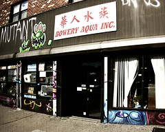 Bowery Mutant (mheidelberger2000) Tags: street nyc newyorkcity windows urban graffiti manhattan lowereastside gritty sidewalk bowery gothamist mutant grainy grimy boweraquainc