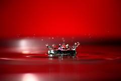 Nikon D3100+SIGMA70-300-MACRO-SLOW SYNCH FLASH: Dancing Drops-Just Collapsed!!! (El fotgrafo!) Tags: macro nikon sigma drop micro dr