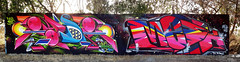 Zade Mesk (COLOR IMPOSIBLE CREW) Tags: chile color graffiti crew 2012 zade mesk imposible quilpue fros belloto