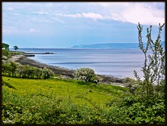 Redcastle, Co Donegal (Eileen (EMC) Pro) Tags: trees ireland sky seascape grass river landscape scenery lough shoreline scenic eire coastal donegal foyle loughfoyle bythesea redcastle coastalview irlandi