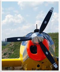 Morane MS733 Alcyon (Aerofossile2012) Tags: aircraft meeting airshow avion alcyon morane ms733 ba116