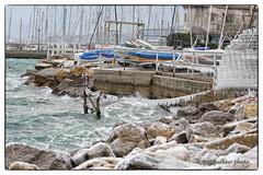 Trieste: Bora & Gelo (Pachibro Portfolio) Tags: sea costa snow ice canon eos coast mare gulf wind neve bora trieste vento golfo ghiaccio friuliveneziagiulia muggia 50d canoneos50d shotsts scattifotografici pasqualinobrodella pachibroportfolio pachibro
