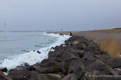 Winter in Nederland (Ingrid Fotografie) Tags: winter ice nederland lelystad ijsselmeer ijs ijsschotsen kruiend ingridfotografie