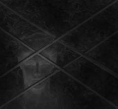 Sisi behind bars - Elisabeth, Kaiserin von sterreich, Knigin von Ungarn - Elisabeth of Austria, Empress of Austria, Queen of Hungary (hedbavny) Tags: vienna wien park blackandwhite bw woman art monument face statue bar bayern austria sterreich gesicht kunst sightseeing ring architect artnouveau scaffold mikado frau schwarzweiss sculptor tourismus ringstrasse sisi sissi gitter tangram mythos jugendstil denkmal architekt oesterreich schicksal restauration sehenswrdigkeit findesiecle volksgarten bearbeitung jahrhundertwende gerst berhmt restaurierung monarchie schwarzweis pictorialism parkanlage berhmtheit bildhauer fotobearbeitung beliebt kaiserinelisabeth sterreichungarn scaffolded empresselisabethofaustria ringstrase elisabethofaustria friedrichohmann kniginelisabeth wienervolksgarten pictorialistic kaiserinvonsterreich piktorialismus hansbitterlich elisabethvonsterreich lokulus kniginvonungarn friedrichgrill sisikitsch mythossisi drkarlluegerringvolksgartenwien