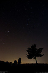 Stars Over Cash Valley (Western Maryland Photography) Tags: longexposure trees cemetery silhouette night way stars shot maryland astronomy universe milky lavale westernmaryland alleganycounty canoneos7d cashvalleyroad restlawnsmemorialgardens