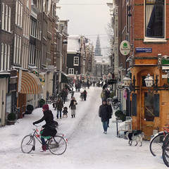 The Old Church in the heart of Amsterdam (Bn) Tags: world city winter dog white snow cold holland i