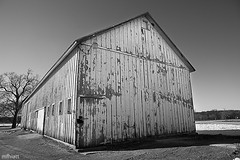 Woodshed (mfhiatt) Tags: blackandwhite bw monochrome barn peeling paint shed iowa weathered waterworks desmoines