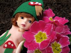 Mushroom (Inika Blythe) Tags: bjd deergirl dollzone