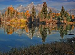 Schwabacher's Landing~Grand Teton National Park (P. Oglesby) Tags: autumn reflections landscapes grandtetonnationalpark thehighlander godlovesyou theendoftheinnocence schwacherslanding