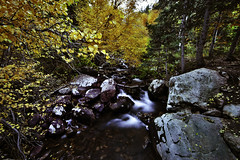 Lake Blanche (Aga La Magica) Tags: longexposure autumn trees color tree fall water river landscape utah leaf stream hiking hike leafs lakeblanche