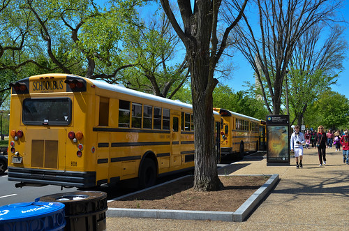 School buses outside the Natural History Museum in DC?