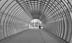 Tunnel (Fahad Al oudah) Tags: china california from birthday park christmas street new city nyc uk trip travel family flowers blue winter wedding friends sunset red party summer vacation por