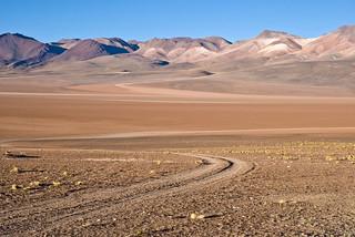 desert de siloli