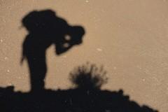 Nikonman :) (Michel Seguret Thanks for 12,7 M views !!!) Tags: shadow lake france primavera me nature lago spring nikon natur lac natura moi ombre explore printemps languedoc insolite frühling d800 hérault salagou ruffe ruffes michelseguret