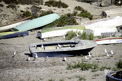 Reunion de pescadores (AlmaMurcia) Tags: nikon tabarca d7000 almamurcia fotoencuentrosdelsureste 29salida