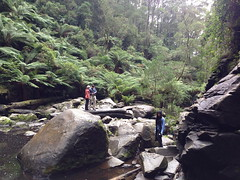 lorne 394 (raqib) Tags: holiday nature water trekking trek waterfall hiking victoria hike falls bushwalking vegetation rc lorne iphone erskine erskinefalls waterfallaustralia
