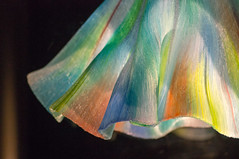 Toots Zynsky - Dance of the Aurora (mline.ch) Tags: abstract macro art texture design shanghai bright sony contax craftsmanship lightroom sonnar vsco nex5n