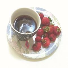 Black Tea with Mixed Berries plus Strawberries #MyDailyCupOfTea #tea #t #cup #teacup #tazza #mug #hottea #hotteaduringsummer #tcaldo #instatea #tealover #teaporn #teatime #tealife #teaaddict #teastagram #teaoftheday #drink #commercioequo #equosolidale # (PhoebeZu) Tags: cup tea drink strawberries mug teacup teatime fairtrade tazza blacktea t hottea teaporn mixedberries equosolidale commercioequo teaaddict tealover tcaldo teaoftheday tealife instatea mydailycupoftea teastagram hotteaduringsummer