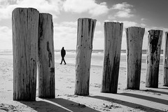 [untitled  Domburg, The Netherlands/ April 2016] (querformat-fotografie) Tags: street city people urban blackandwhite bw white black holland art beach lines architecture strand germany photography europe fotografie graphic candid thenetherlands orte unposed mainz niederlande domburg zufall strassenfotografie alltagssituation achimkatzberg querformatfotografie choreografiedeszufalls