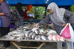 DSC06969 (Almixnuts) Tags: market tani pasar outdoormarket pasartani